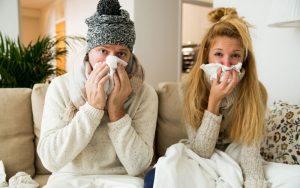 prévenir les rhumes avec la propolis